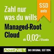 Zahl nur was Du willst - SSD